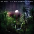 Buy Emil Brandqvist Trio - Entering The Woods Mp3 Download