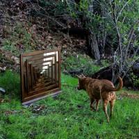 Purchase Amazondotcom - Mirror River (EP)