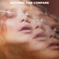 Purchase Agnes - Nothing Can Compare