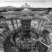 Purchase Order Ov Riven Cathedrals - Thermonuclear Sculptures Blackness
