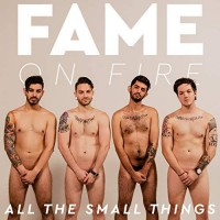 Purchase Fame On Fire - All The Small Things (CDS)