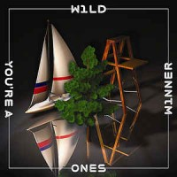 Purchase Wild Ones - You're A Winner