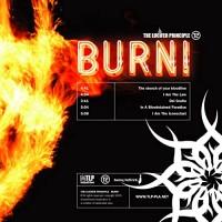 Purchase The Lucifer Principle - Burn!