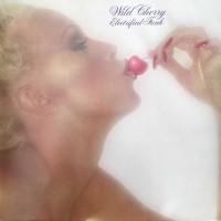 Purchase Wild Cherry - Electrified Funk (Vinyl)