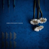 Purchase Modern Error - Lost In The Noise