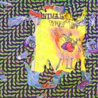 Purchase Animal Collective - Ballet Slippers
