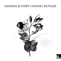 Purchase Daniel Rateuke - Daniel Rateuke & Kadosh & Ivory
