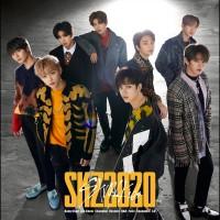 Purchase Stray Kids - Skz2020