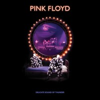 Purchase Pink Floyd - Delicate Sound Of Thunder (2019 Remix) (Live) CD1