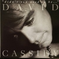 Purchase David Cassidy - Didn't You Used To Be...
