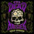 Buy The Dead Daisies - Holy Ground Mp3 Download