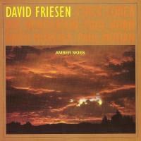 Purchase David Friesen - Amber Skies