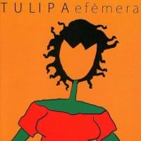 Purchase Tulipa - Efêmera