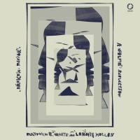 Purchase Matthew E. White & Lonnie Holley - Broken Mirror: A Selfie Reflection
