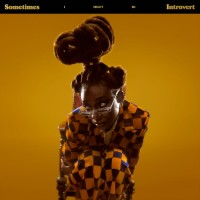 Purchase Little Simz - Sometimes I Might Be Introvert